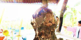 คอหวยฮือฮา พบโครงกระดูกคนแปดศอกที่ชัยภูมิ แห่ตีเลขเด็ดงวดนี้