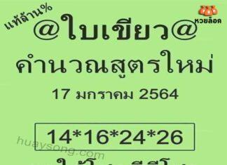 หวยใบเขียว ชุดเลขเด็ด 2 ตัวบนล่างสูตรใหม่ หวยงวด 17/1/64